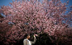 Ιαπωνία, iaponia