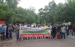 Συλλαλητήριο, Ελασσόνα, syllalitirio, elassona
