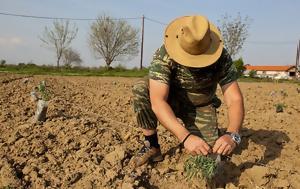 Αγροταυτότητα, Ενίσχυση, agrotaftotita, enischysi