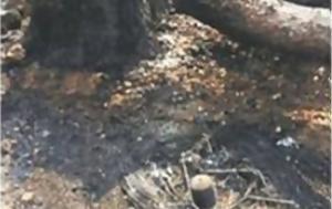 Άνθρακες, Εκτεθειμένος, Τόσκας - Πέρασαν, anthrakes, ektetheimenos, toskas - perasan