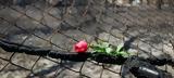 Φωτιά, Μάτι, -Πέθανε 78χρονη,fotia, mati, -pethane 78chroni