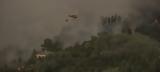 Καίγεται, Πορτογαλία -Σε, [εικόνες],kaigetai, portogalia -se, [eikones]