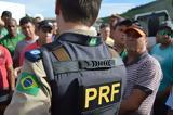 Βραζιλία, Αδέσποτη,vrazilia, adespoti