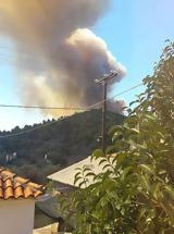 Φωτιά Τώρα Κοντοδεσπότι Εύβοια, Κάηκε,fotia tora kontodespoti evvoia, kaike