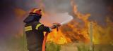 Φωτιά Τώρα Εύβοια – Ραγδαίες,fotia tora evvoia – ragdaies