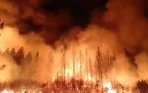 Οι επιστήμονες προειδοποιούν για τις φωτιές: Στο μέλλον θα είναι ακόμη πιο ισχυρές,  γρήγορες και φονικές