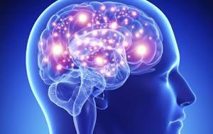 Με παιχνίδι σε Η/Υ διαπίστωσαν ότι ο ανθρώπινος εγκέφαλος έχει «αυτόματο πιλότο»