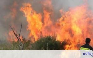 Φωτιά, Συναγερμός, Μαρκόπουλο, fotia, synagermos, markopoulo