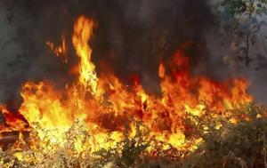 Φωτιά, Βραυρώνα, Ηλεία ΤΩΡΑ – Ειδήσεις ΒΙΝΤΕΟ, fotia, vravrona, ileia tora – eidiseis vinteo