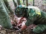 Κοινωνική Προσφορά, Στρατού Ξηράς, Αύγουστο 2018,koinoniki prosfora, stratou xiras, avgousto 2018