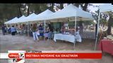 ΕΡΤ Σερρών, Φεστιβάλ Μουσικής, Εικαστικών,ert serron, festival mousikis, eikastikon