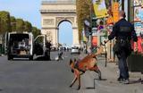 Παρίσι, Συναγερμός, Σανζ Ελιζέ, - Κινητοποιήθηκε,parisi, synagermos, sanz elize, - kinitopoiithike