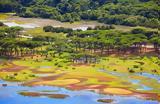 Αμαζόνιος, -ΦΩΤΟ,amazonios, -foto