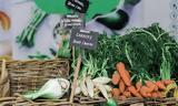 Και όμως αυτά τα 9 λαχανικά σου προκαλούν περισσότερο φούσκωμα,απ' όσο νόμιζες!!!
