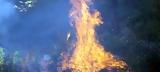 Τραγωδία, Τρίκαλα, Κάηκε,tragodia, trikala, kaike