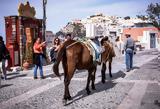 Τουρίστες, 100, Σαντορίνης,touristes, 100, santorinis