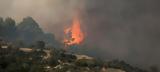 Πυρκαγιά, Χαλκιδική, 7 000,pyrkagia, chalkidiki, 7 000