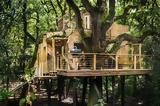 Αγγλίας – Αυτό, Woodman's Treehouse,anglias – afto, Woodman's Treehouse