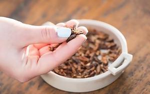 Στα ράφια βρετανικού σούπερ μάρκετ ψητοί γρύλοι και άλλα έντομα προς κατανάλωση