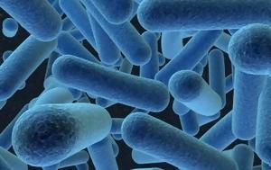 Σε διπλάσιο όγκο από τους ωκεανούς η βαθιά μικροβιακή βιόσφαιρα