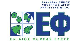 Μήνυμα, ΕΦΕΤ, Παγκόσμια Ημέρα Καταναλωτή, minyma, efet, pagkosmia imera katanaloti