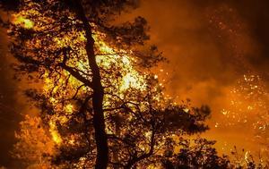 Φωτιά, - Εύβοια, Πρόβλημα, Canadair, Κροατία, fotia, - evvoia, provlima, Canadair, kroatia
