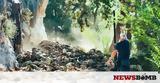 Τρόμος, Ναύπλιο, Έτρεχαν, - Εικόνες,tromos, nafplio, etrechan, - eikones