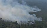 Πυρκαγιές, Αμαζόνιο, Κολομβία,pyrkagies, amazonio, kolomvia