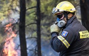 Χαλκιδική, Πυρκαγιά, Σιθωνία, chalkidiki, pyrkagia, sithonia