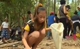 12χρονη Γκρέτα Τούνμπεργκ, Ταϊλάνδης,12chroni gkreta tounbergk, tailandis