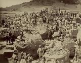 Αρχαίας Ολυμπίας, Βρετανό, Κόκερελ,archaias olybias, vretano, kokerel