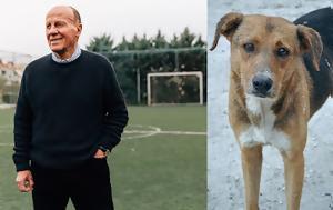 Δωρεάν, Ακαδημία Ποδοσφαίρου, Δομάζου, dorean, akadimia podosfairou, domazou
