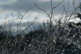 """Χιόνια, """"λευκά"""", Κρήτη – Πού, -14,chionia, """"lefka"""", kriti – pou, -14"""