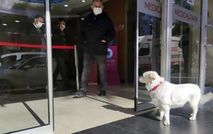 Τουρκία, Σκυλάκι, tourkia, skylaki