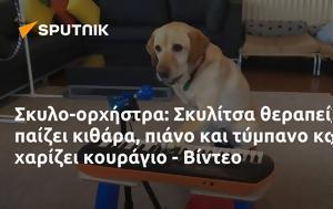 Σκυλο-ορχήστρα, Σκυλίτσα, - Βίντεο, skylo-orchistra, skylitsa, - vinteo