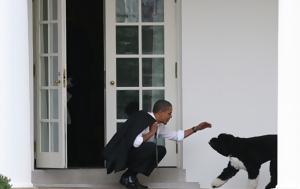 Συντετριμμένος, Ομπάμα, Μπο, syntetrimmenos, obama, bo