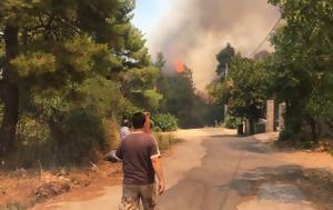 Καίγονται, Σταμάτα, Ροδόπολη-Η, Διόνυσο, kaigontai, stamata, rodopoli-i, dionyso