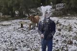 Τρελάθηκε, Βραζιλία, Χιόνισε, – 43, | Video,trelathike, vrazilia, chionise, – 43, | Video